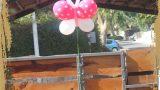 קישוטים - פרפר מעופף עם הליום, מנוקד
